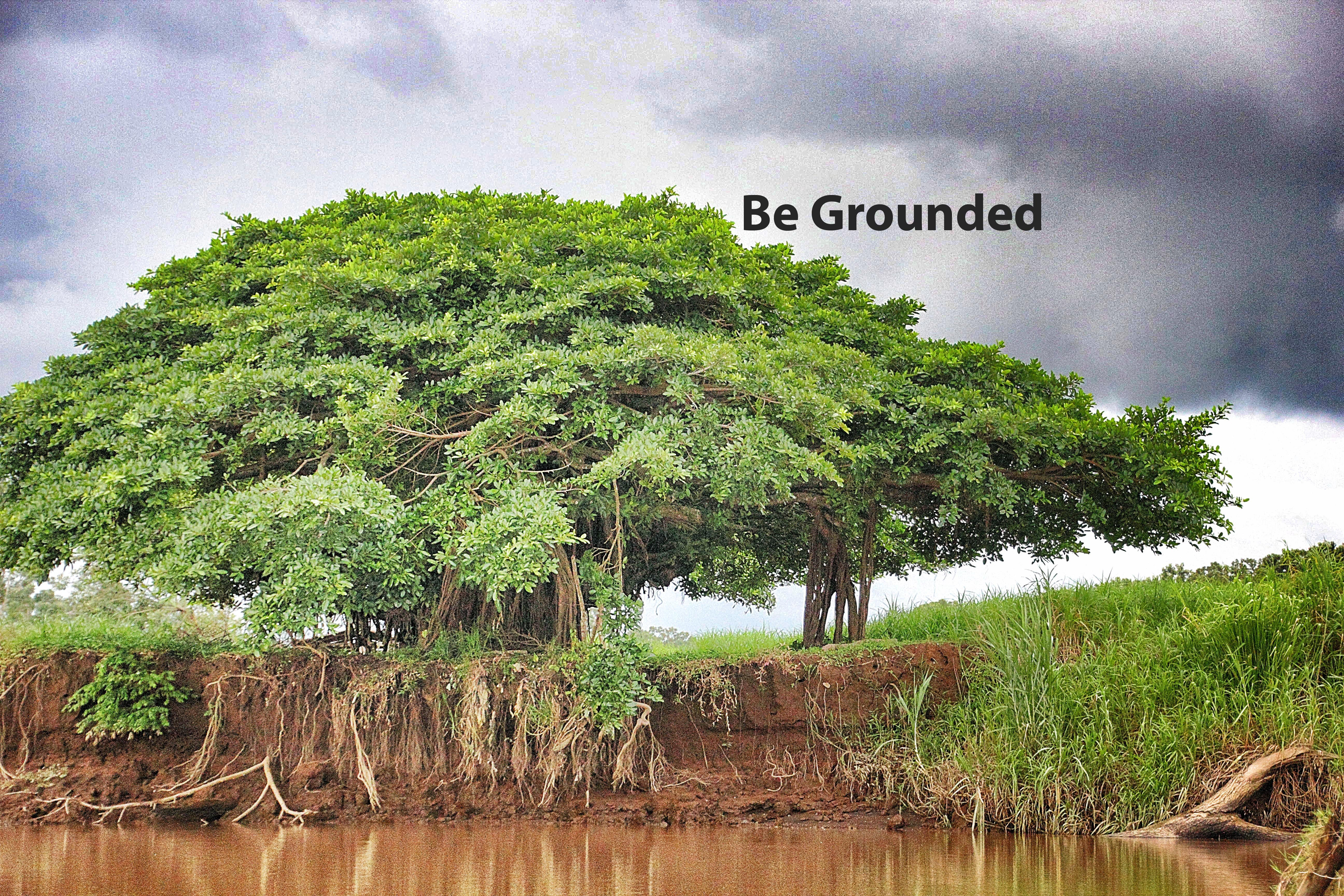 Be Grounded by Michele Molitor
